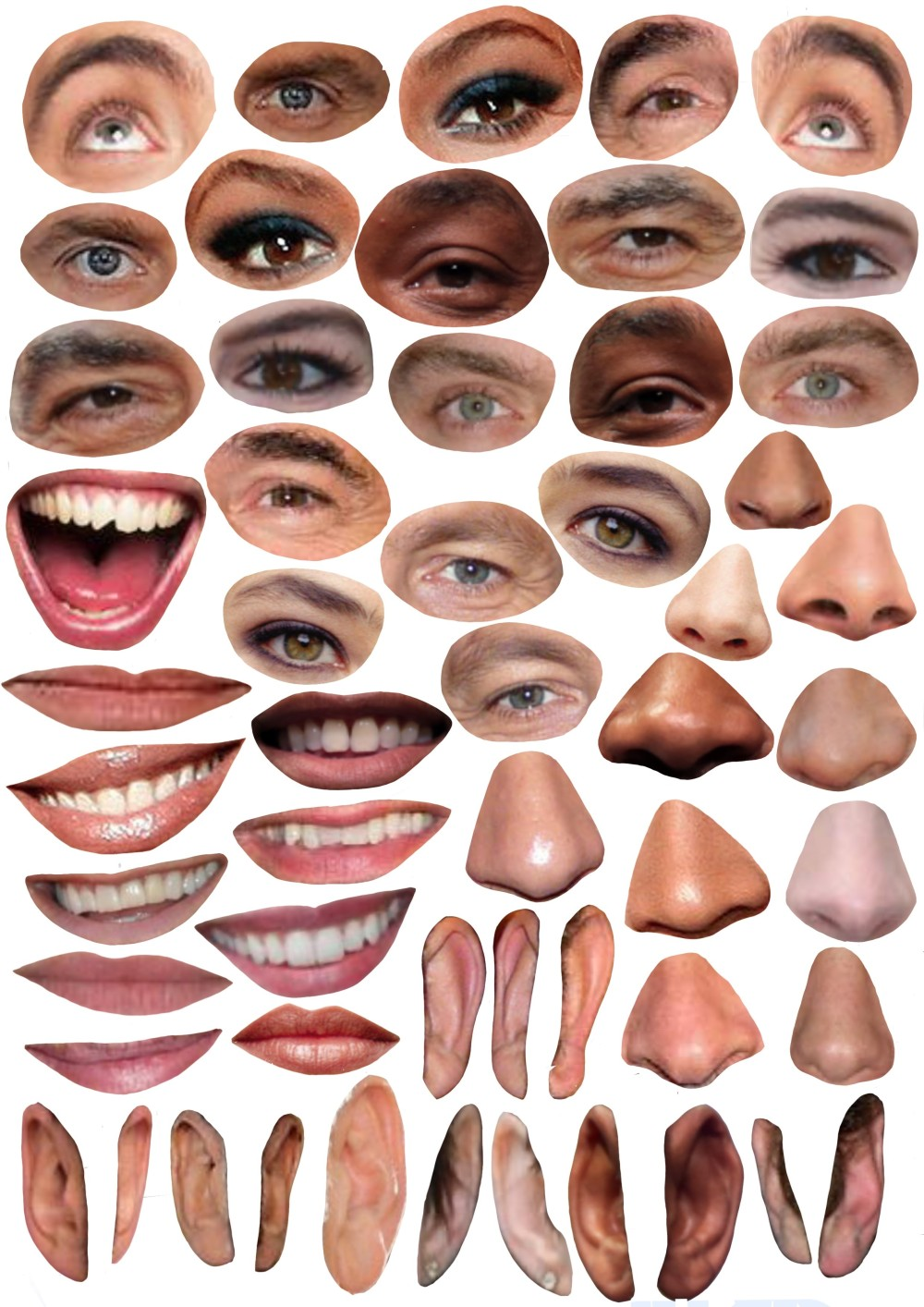 planche visage